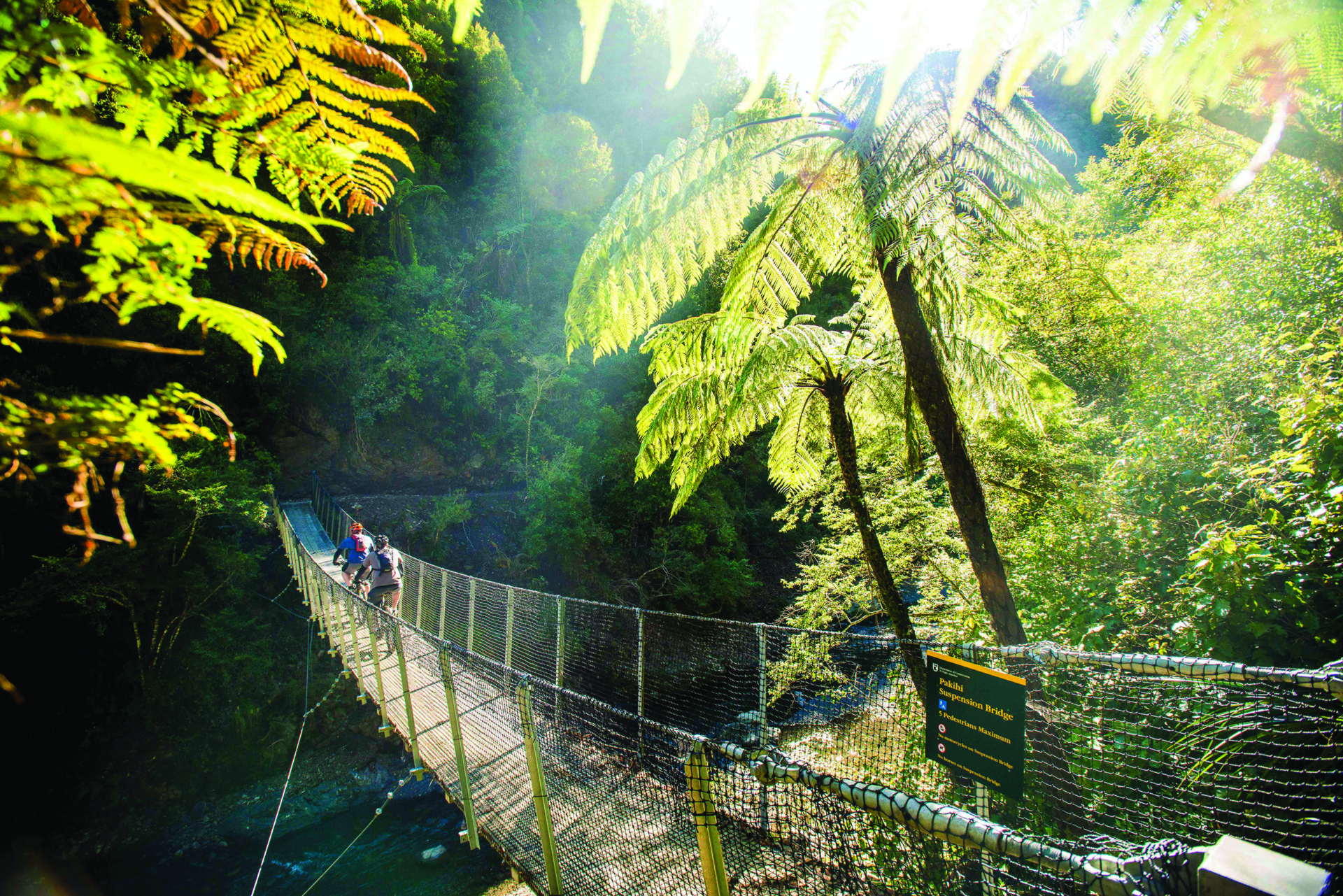 Things to do in Whakatāne